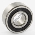 62204-2RS-SKF