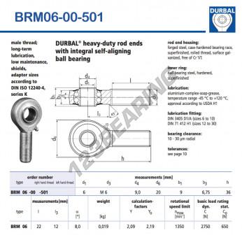 BRM06-00-501-DURBAL