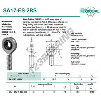 DSA17-ES-2RS-DURBAL