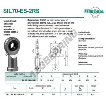 DSIL70-ES-2RS-DURBAL